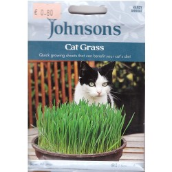 Žolė Katėms (Avena Sativa)