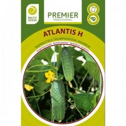 ATLANTIS H, lauko agurkai,...